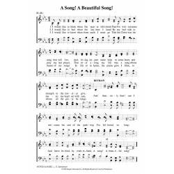 A Beautiful Song - PDF Song Sheet
