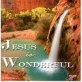 Jesus Is Wonderful CD