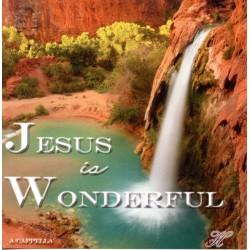 Jesus Is Wonderful CD