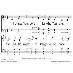 I Praise You Lord - PPT Slides