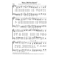 Mary Did You Know - PDF Song Sheet