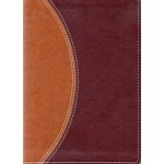 NIV Compact Study Bible Tan/Burgundy B5025