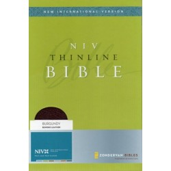 NIV Thinline Bible Navy Bonded Leather B5002