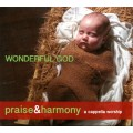 Wonderful God - Praise and Harmony CD